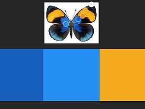 Подбор палитр легко и быстро: обзор программ для работы с цветом. Ярмарка Мастеров - ручная работа, handmade.