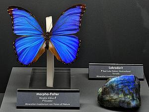 Бабочки и камни | Ярмарка Мастеров - ручная работа, handmade