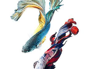 Танцующие рыбки тайского фотографа | Ярмарка Мастеров - ручная работа, handmade