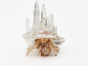 Aki Inomata - архитектор жилищ для раков - отшельников | Ярмарка Мастеров - ручная работа, handmade
