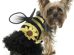 Одежда для собак. Необходимость и курьезы | Ярмарка Мастеров - ручная работа, handmade