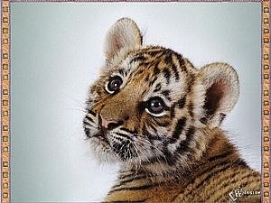Конкурс коллекций от Тигрёнка! Часть 2 | Ярмарка Мастеров - ручная работа, handmade