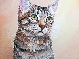 Мастер-класс по рисованию котенка пастелью. Ярмарка Мастеров - ручная работа, handmade.