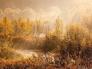 ... Всем бы такую красивую осень ... ... Источники Вдохновения ...)) | Ярмарка Мастеров - ручная работа, handmade