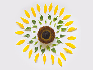 Цветочный пазл | Ярмарка Мастеров - ручная работа, handmade