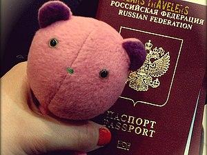 Bears Travelers (мишки-путешественники) | Ярмарка Мастеров - ручная работа, handmade