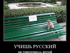 85 правил русского языка | Ярмарка Мастеров - ручная работа, handmade