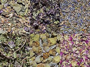 Сухоцветы. Новое поступление. | Ярмарка Мастеров - ручная работа, handmade