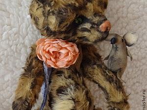 Аукцион на Тедди котю, фото № 1