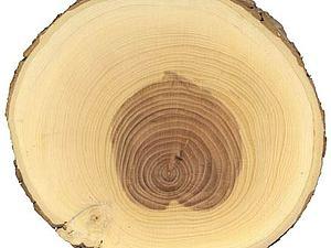 Сорта древесины: Яблоня | Ярмарка Мастеров - ручная работа, handmade