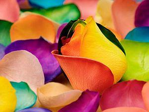 Цвет в рукоделии. Основы. | Ярмарка Мастеров - ручная работа, handmade
