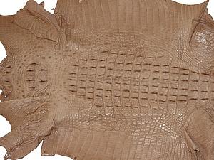Изделия из кожи крокодила. Как отличать подделку от натурального ... 03336771d56