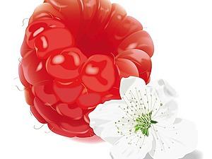 Как сделать ягодки малины из мыльной основы. Ярмарка Мастеров - ручная работа, handmade.