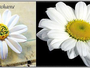 Нежнее нежного цветы из холодного фарфора