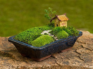 Миниатюрный сад на окошке | Ярмарка Мастеров - ручная работа, handmade