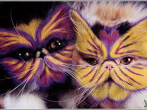 Зачем красить кошек? | Ярмарка Мастеров - ручная работа, handmade