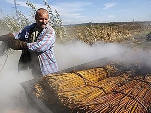 Подготовка лозы | Ярмарка Мастеров - ручная работа, handmade