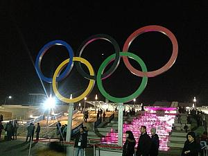 Моя Олимпиада Сочи 2014. | Ярмарка Мастеров - ручная работа, handmade