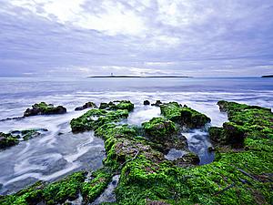 Серия Секреты моря... вдохновение самой природы | Ярмарка Мастеров - ручная работа, handmade