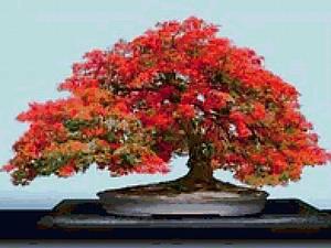 Огненное дерево | Ярмарка Мастеров - ручная работа, handmade