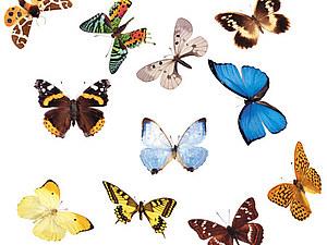 Салфетки с бабочками в ассортименте | Ярмарка Мастеров - ручная работа, handmade