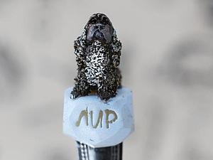 Делаем «вкусную ложечку» с любимым питомцем из полимерной глины. Ярмарка Мастеров - ручная работа, handmade.