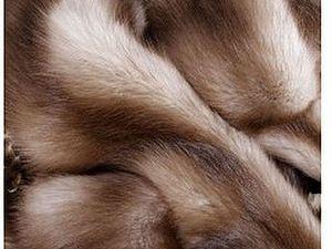 Образцы натурального меха | Ярмарка Мастеров - ручная работа, handmade