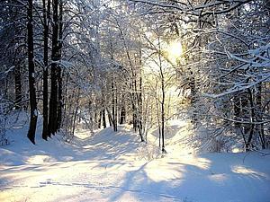 пусть зима будет снежной...:))) | Ярмарка Мастеров - ручная работа, handmade
