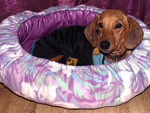 Делаем лежанку для собаки. Ярмарка Мастеров - ручная работа, handmade.