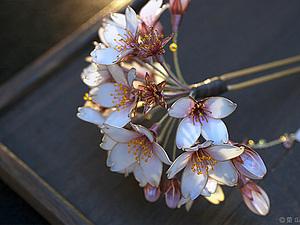 Секрет знаменитых заколок Sakae | Ярмарка Мастеров - ручная работа, handmade