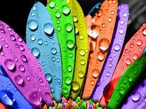 Семь цветов радуги..... | Ярмарка Мастеров - ручная работа, handmade