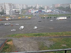 Лето началось. Последствия дождика | Ярмарка Мастеров - ручная работа, handmade
