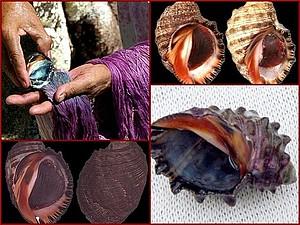 О пурпуре - редком природном красителе | Ярмарка Мастеров - ручная работа, handmade