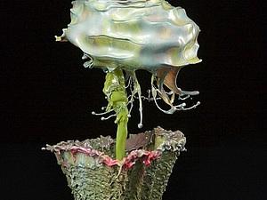 Цветы из брызг воды Джека Лонга | Ярмарка Мастеров - ручная работа, handmade
