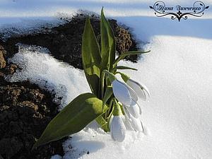 Дыхание весны. | Ярмарка Мастеров - ручная работа, handmade