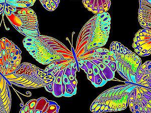 Новые виды бабочек. | Ярмарка Мастеров - ручная работа, handmade