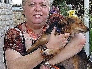 Собака не только друг человека. | Ярмарка Мастеров - ручная работа, handmade