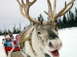 Скандинавские сказки. Рождество. | Ярмарка Мастеров - ручная работа, handmade