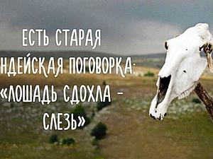 99% людей делают это с дохлой лошадью | Ярмарка Мастеров - ручная работа, handmade