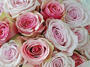 Миллион нежных роз.... | Ярмарка Мастеров - ручная работа, handmade