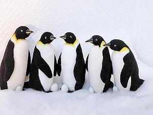 Отчёт о мастер-классах по валянию Пингвина Императорского   Ярмарка Мастеров - ручная работа, handmade
