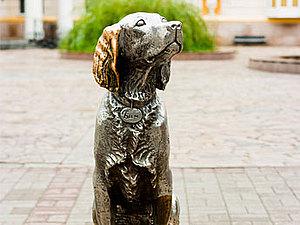 Кот и пёс | Ярмарка Мастеров - ручная работа, handmade
