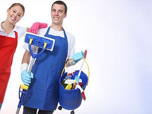 Генеральная уборка по купону - счастье есть! :) | Ярмарка Мастеров - ручная работа, handmade