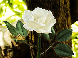 Видео мастер-класс: делаем розу из тутовой бумаги. Ярмарка Мастеров - ручная работа, handmade.