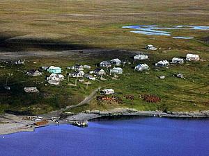 Мое открытие Арктики  Баренцево,Карское море,о.Вайгач | Ярмарка Мастеров - ручная работа, handmade