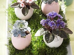 Пасхальный сад в яичной скорлупе   Ярмарка Мастеров - ручная работа, handmade