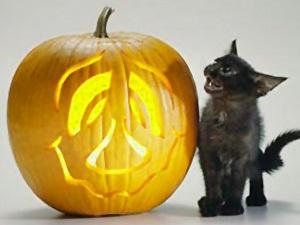 Тыква на Хэллоуин | Ярмарка Мастеров - ручная работа, handmade