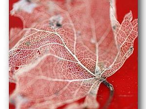 Декупаж с скелетированные листьями