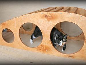 Долгожданная скамья для прогибов! | Ярмарка Мастеров - ручная работа, handmade