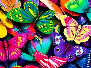 Немного о бабочках   Ярмарка Мастеров - ручная работа, handmade